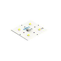 Opulent Americas - XHP50A-0S-04-0D0BJ450E - LED MODULE 5000K SQUARE